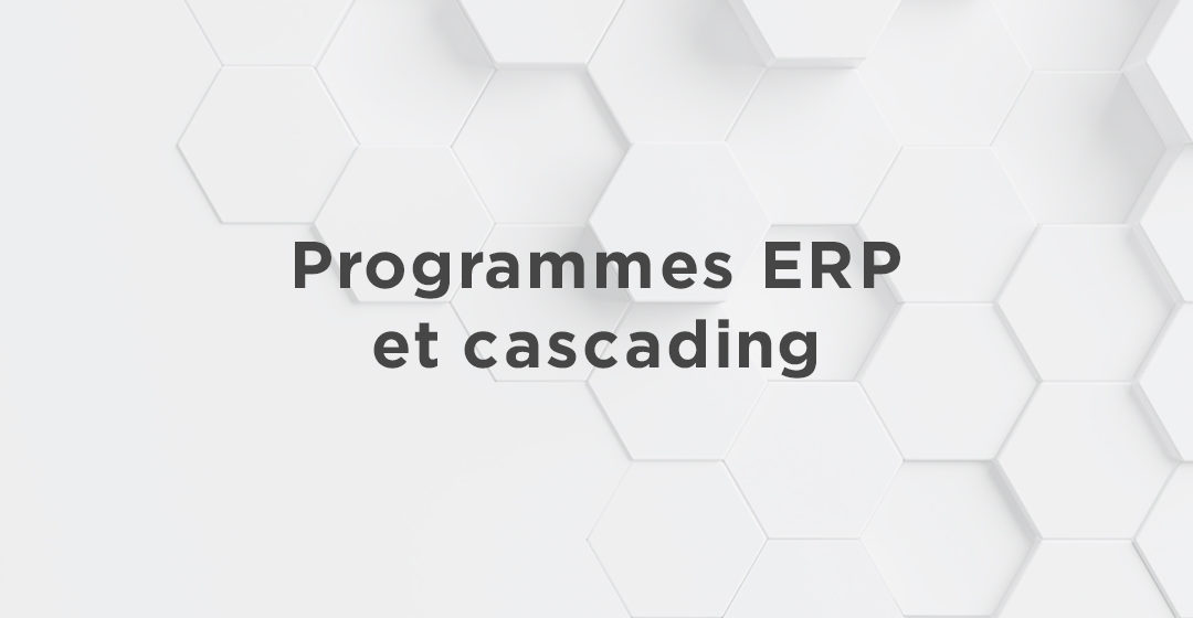Programmes ERP et cascading